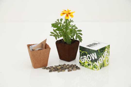 Promotional Plants/ Seeds